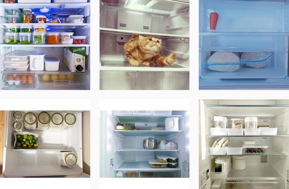 冷蔵庫の中身の写真