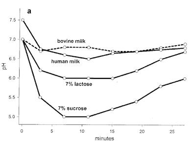 歯垢pHの時間変化の様子